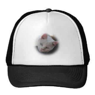 Weiße Katze Baseballcap