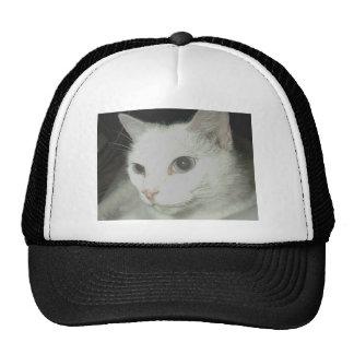 Weiße Katze Baseballmütze