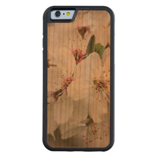Weiße Kirschblüte Bumper iPhone 6 Hülle Kirsche