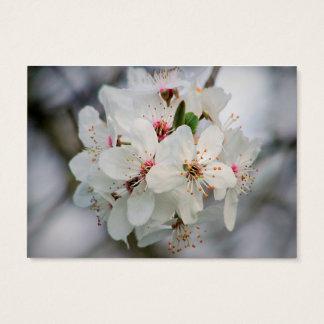 Weiße Kirschblüte Visitenkarte