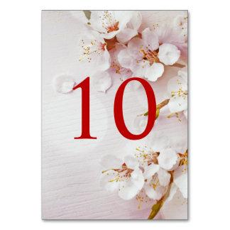 Weiße Kirschblüten-elegante Tischnummern
