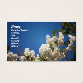 Weiße Kirschblüten gegen blauen Hintergrund Visitenkarte