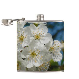 Weiße Kirscheblüten, Frühling Flachmann