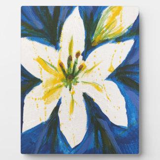 Weiße Lilie auf blauer Sammlung durch Jane Fotoplatte