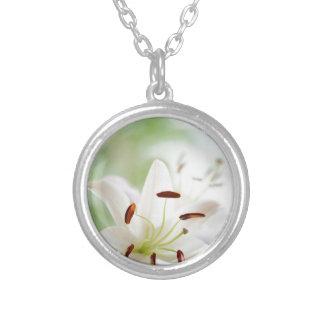 Weiße Lilien-Blume völlig offen Versilberte Kette
