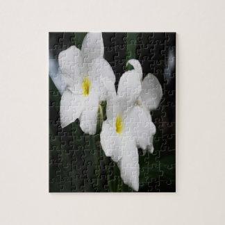 Weiße Lilien Puzzle