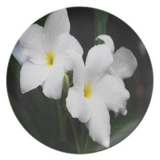 Weiße Lilien Teller