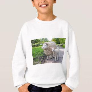 Weiße Mutterschafe und -lamm stehend auf Straße Sweatshirt