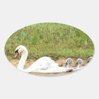 Weiße Mutterschwanschwimmen in Übereinstimmung mit Ovaler Aufkleber