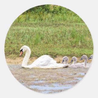 Weiße Mutterschwanschwimmen in Übereinstimmung mit Runder Aufkleber