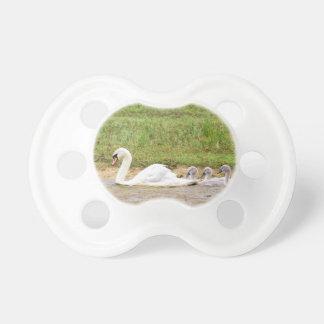 Weiße Mutterschwanschwimmen in Übereinstimmung mit Schnuller