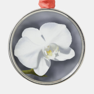Weiße Orchideen-Blume Silbernes Ornament