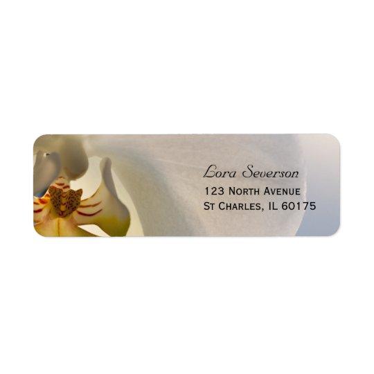 Weiße Orchideen-Eleganz-Rücksendeadresse