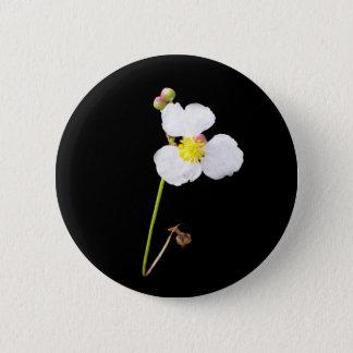 Weiße Orchideen-Geschenke und Kleid Runder Button 5,7 Cm