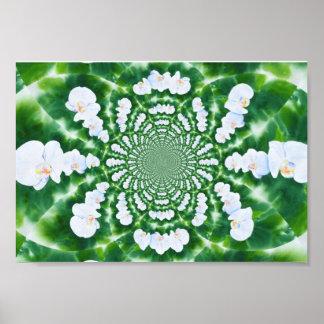 Weiße Orchideen-Mandala Poster