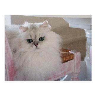 Weiße persische Katze auf einem rosa Stuhl Postkarte