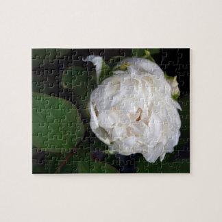 Weiße Pfingstrosen-Blumenphotographie-Puzzlespiel Puzzle