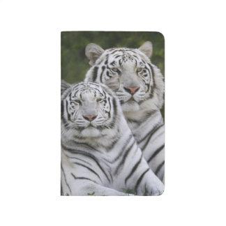 Weiße Phase, bengalischer Tiger, der Tigris Taschennotizbuch