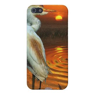 Weiße Reiher-u. Sonnenuntergang-wild lebende Tiere iPhone 5 Hülle