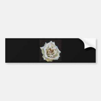 Weiße Rose Autoaufkleber