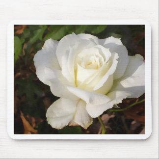 Weiße Rose, die Januar-Brautparty-Geschenke Mousepad