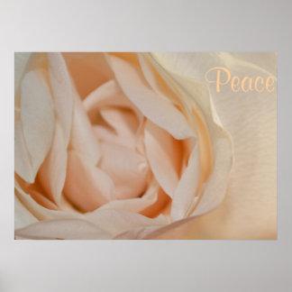 Weiße Rosen-Blumen-FriedensLiebe-Schicksals-Kunst Plakate
