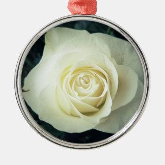 Weiße Rosen-Tasse Silbernes Ornament