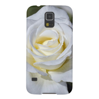 Weiße Rosenblüten des Singles Galaxy S5 Cover