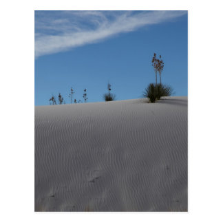 Weiße Sanddüne Postkarte