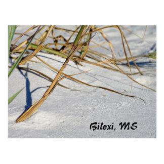 Weiße Sande mit Gras Postkarte