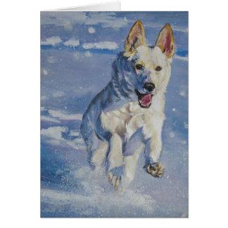 weiße Schäferhund Weihnachtskarte Karte