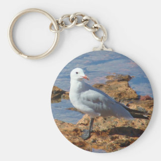 Weiße Seemöwe - Keychain Schlüsselanhänger