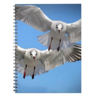 Weiße Seemöwen im Flug Notizblock
