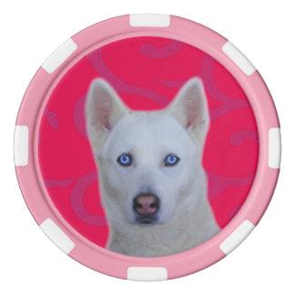 Weiße sibirischer Schlittenhund-Lehm-Poker-Chips, Poker Chip Set
