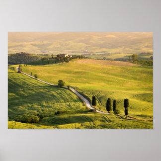 Weiße Straße im Toskana-Landschaftsplakat Poster