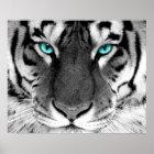 Weiße Tiger-Plakat-Augen Poster