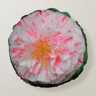 Weiße u. rosa Gartennelken-Blume Nahaufnahme Rundes Kissen