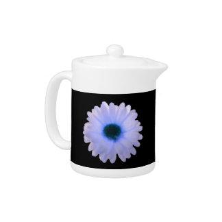 Weiße und blaue Ringelblumen-Teekanne