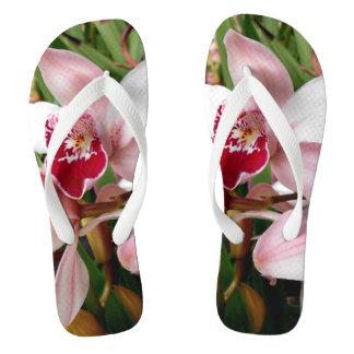 Weiße und rosa Phalaenopsis-Orchidee Flip Flops