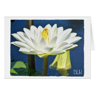 Weiße Wasserlilie-Blume/Blumenkunst Karte