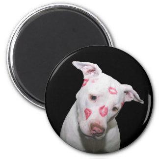 Weiße Welpen-HundeLiebe, versiegelt mit Lippenstif Magnete