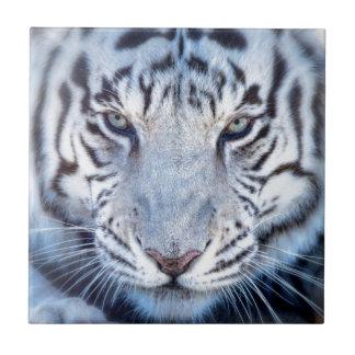Weißer bengalischer Tiger Keramikfliese