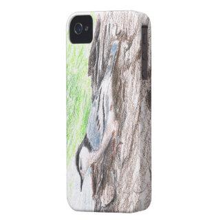 Weißer-Breasted Kleiber-Kasten für das BlackBerry iPhone 4 Case-Mate Hülle