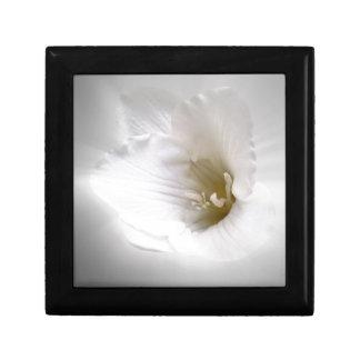 weißer Freesia Erinnerungskiste