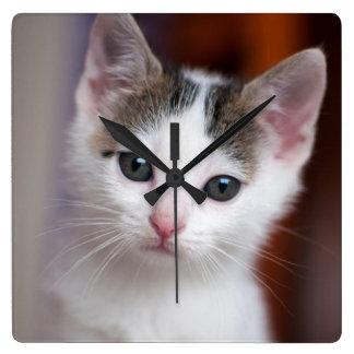 Weißer gepunkteter Kitty Quadratische Wanduhr