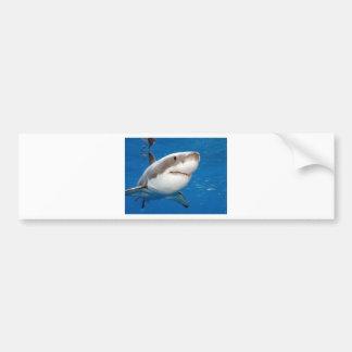 Weißer Hai Autoaufkleber