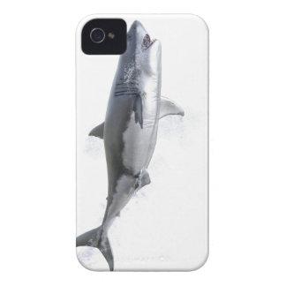 Weißer Hai, der zur Oberfläche schwimmt iPhone 4 Hüllen