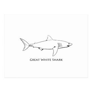 Weißer Hai (Linie Kunst) Postkarte