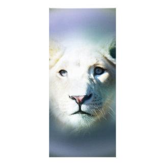 Weißer Löwe-blaue Augen Afrikas Werbekarte