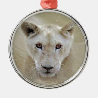 Weißer Löwe-Geist-Krieger Afrika Silbernes Ornament